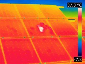 zonnepanelen warmtebeeld